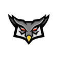 angry horned owl head front mascot vector image