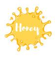 cartoon style honey blot vector image vector image