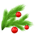 green lush spruce branch decorated with red toy vector image vector image