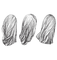 Hand drawn hair vector image vector image