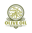 olive branch icon for olive oil label vector image