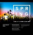 spring grass dawn modern flyer template vector image vector image