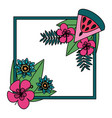 watermelon tropical flowers leaves frame vector image vector image