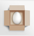 white chicken egg in a brown cardboard box vector image vector image