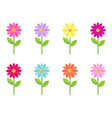 daisy collection vector image