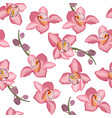 pink orchid floral seamless pattern flowers bloom vector image