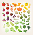 set of common vegetables in rainbow layout vector image vector image