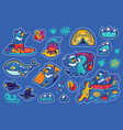 summer vacation in tasmania sticker set vector image vector image