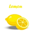 a lemon vector image