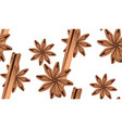 anise with cinnamon vector image