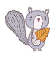 cute little chipmunk with leaf vector image