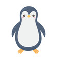 cute little penguin cartoon isolated white vector image