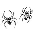 Danger spiders vector image vector image