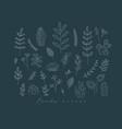 floral leaves set dark blue vector image vector image