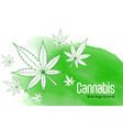 green watercolor with marijuana cannabis leaves vector image