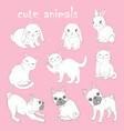 set with animals posters cat dog rabbit vector image vector image