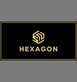sn hexagon logo design inspiration vector image vector image