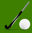 Stick and ball field hockey vector image