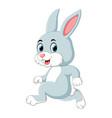 a cute rabbit running vector image vector image