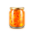 Apricot jam isolated on white vector image