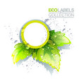 eco label template vector image