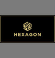 sw hexagon logo design inspiration vector image vector image