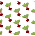 beet vegetable pattern vector image vector image