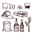 composition of alcoholic beverage rum vector image vector image