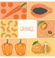 education game orange fruits and vegetables vector image