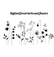 Floral template with stylized herbs and plants vector image vector image