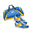 sport accessory training bag and sneakers flat vector image vector image