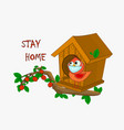 stay at home slogan bird with mask and birdhouse vector image vector image