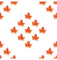 autumn foliage in different colors on white vector image vector image