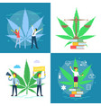 cannabis legalization poster set flat vector image