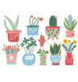 collection blooming plants in colorful pots vector image vector image