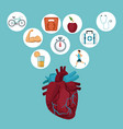color background with heart organ and icons in vector image vector image