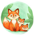 cute watercolor fox family in woods vector image
