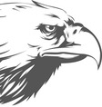 Eagle Head Side View Silhouette vector image