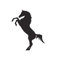 Horse silhouette contour vector image vector image