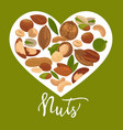 nuts heart poster of organic raw nut vector image vector image