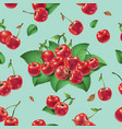 seamless pattern cherries and leaves vector image vector image