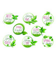 spring sale and springtime holiday label set vector image
