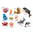 aquatic animals vector image vector image