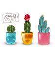 cactus pot set vector image vector image