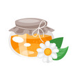 glass honey jar vector image