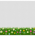 grass and flowers border transparent background vector image vector image