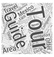 Guided Tours in Mexico Word Cloud Concept vector image vector image