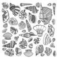 Seashell set collection vector image vector image