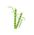 logo icon design sugarcane farm vector image