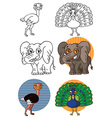 animal elephant peacock and ostrich vector image